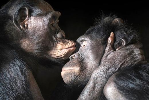 150727.kiss.jpg